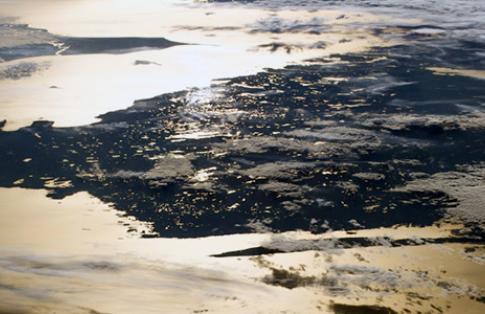 Baltic sea satellite image